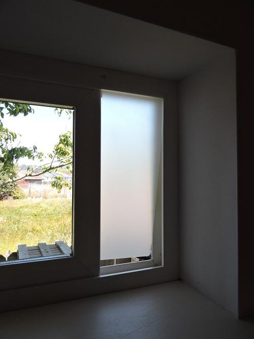 cat door in window