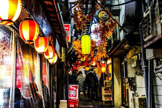 Golden Gai Ally in Shinjuku, Tokyo