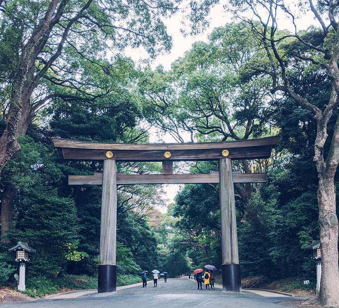 entrance torii gate to Meiji Jingu shrine