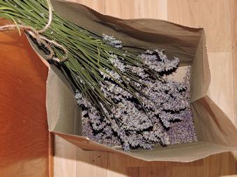 dried lavender in paper bag