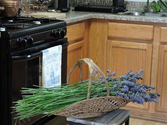Harvested Lavender picked in a basket sitting in the Kitchen