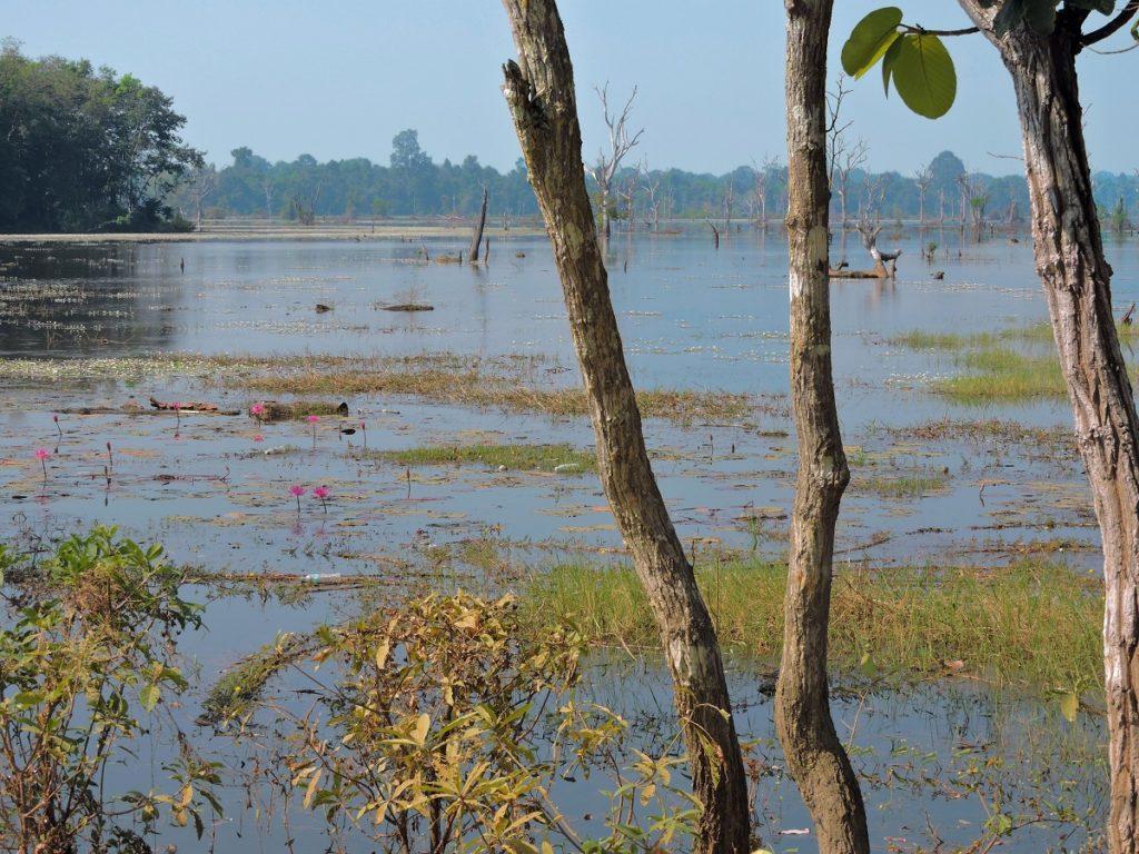 one of the lake like Barays of angkor
