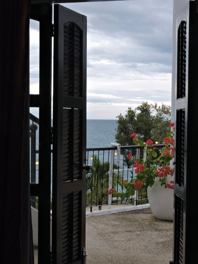 view out hotel room doors with ocean and flowers