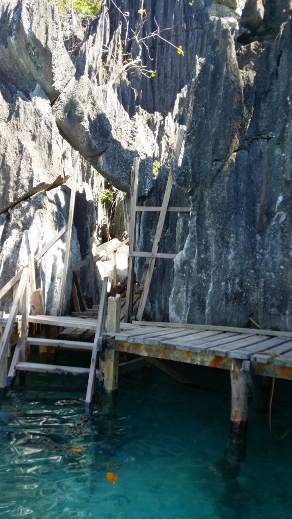 wooden ladder stairs up to barracuda lake