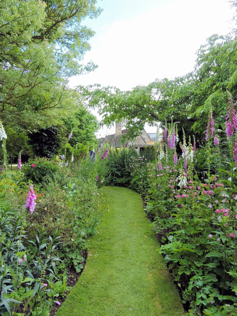 flowers garden walkway foxgloves