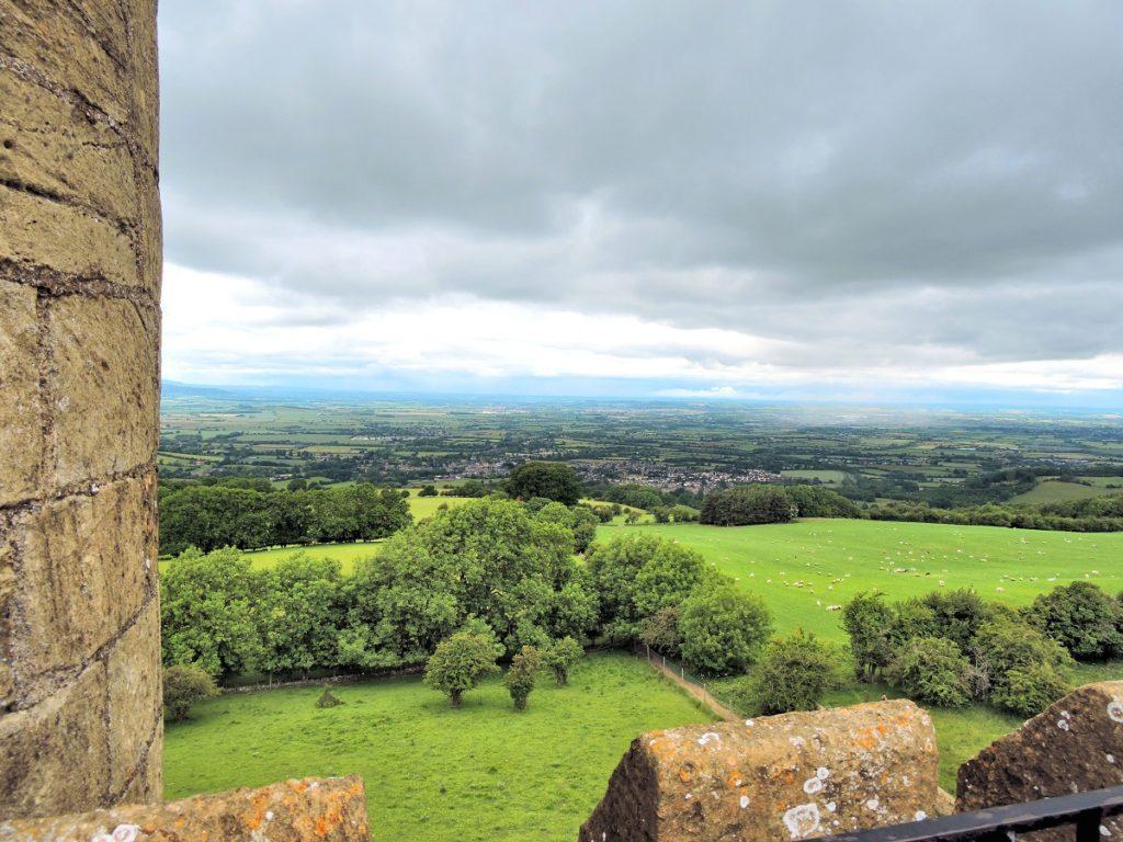 view from top of tower