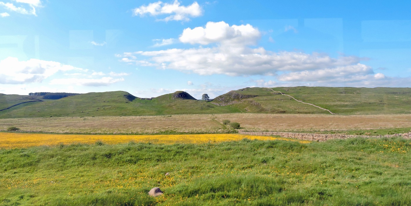 panoramic view of hadrian's wall with scycamore gap